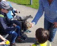 Natur- und Vogelschutzverein