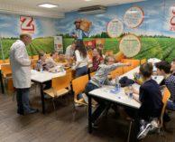 Zweifel Pomy-Chips AG 2019