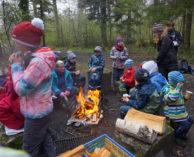 Waldtag mit der CEVI 2019